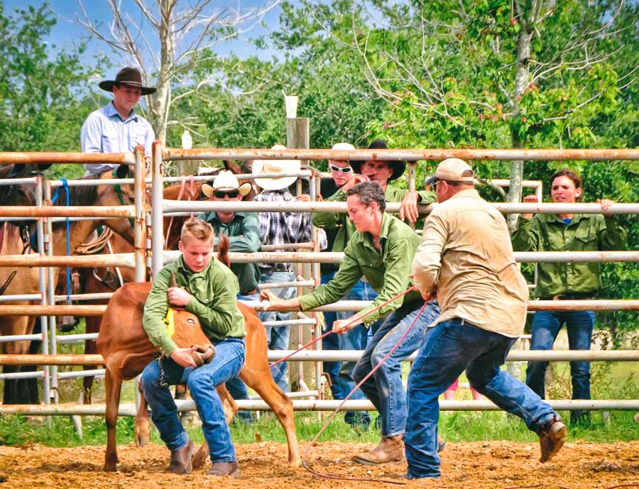 """""""Calf Roping"""" by Betty Eich, 2nd place winner in """"PLACES"""""""