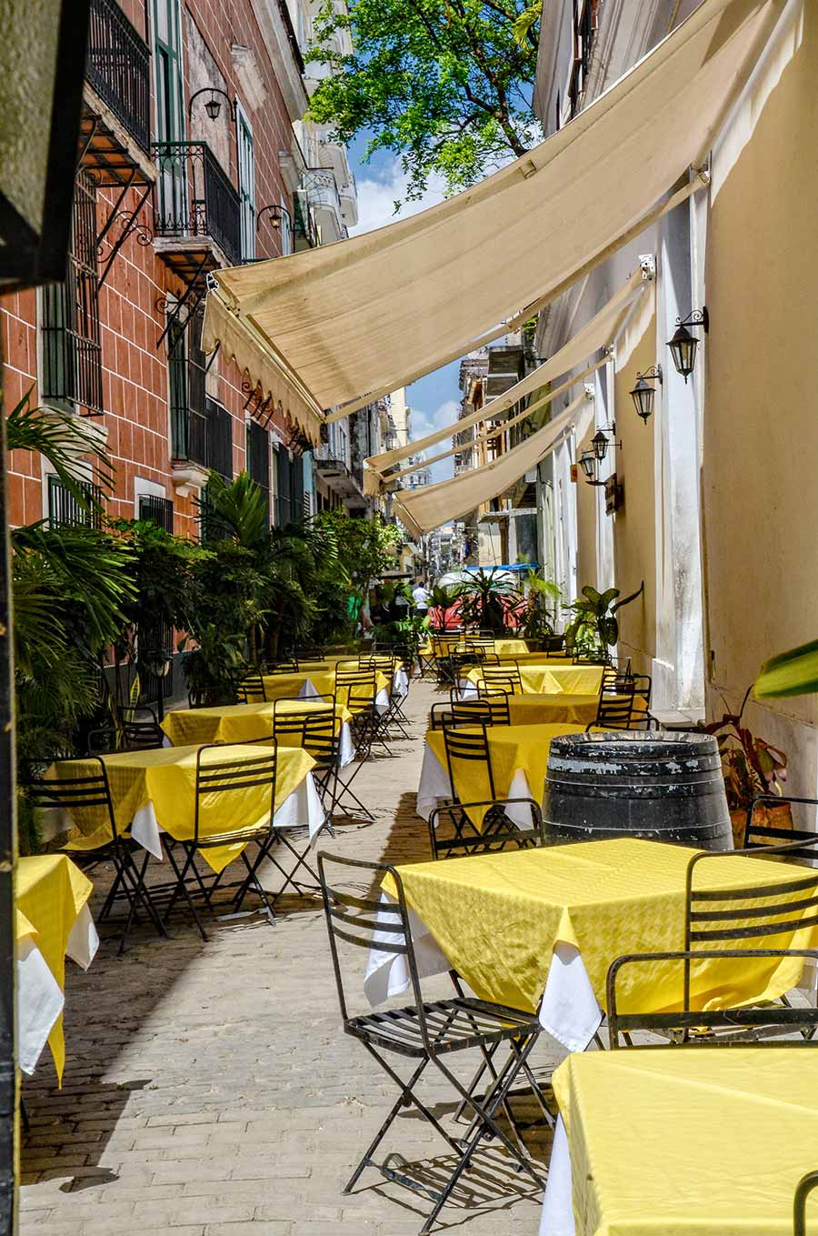 Cuba's outdoor dining cafes are growing