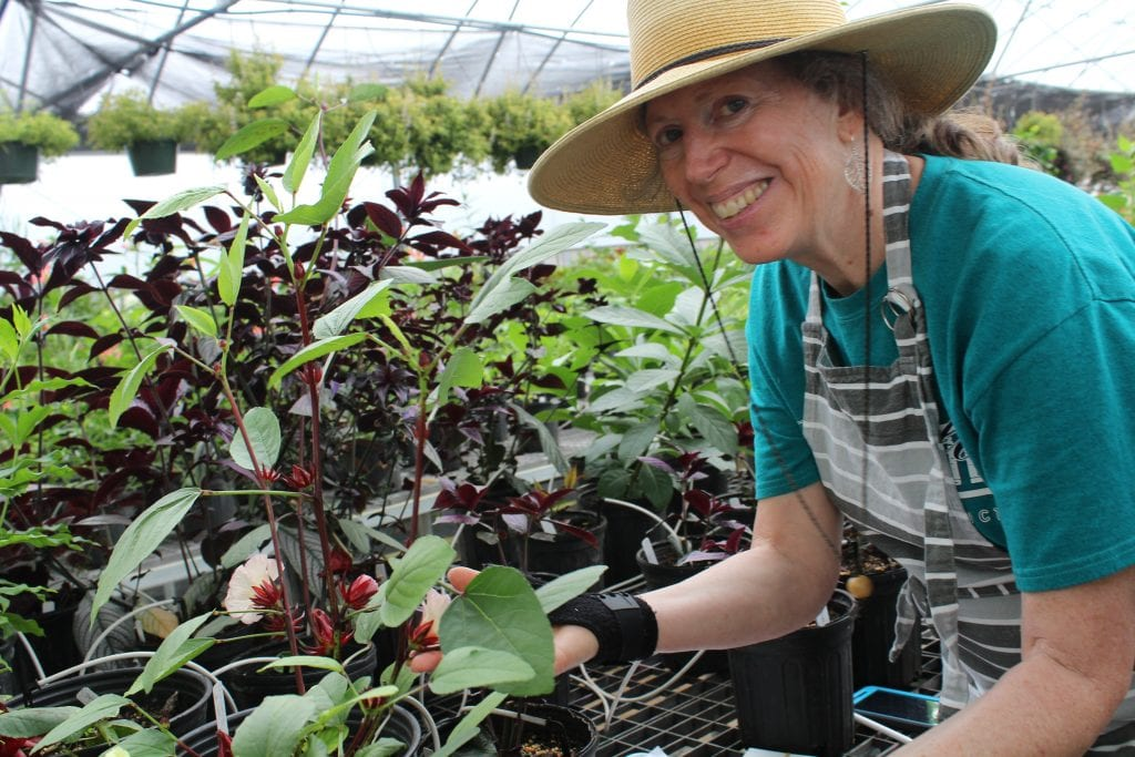 woman-plants-lake-county-discovery-gardens
