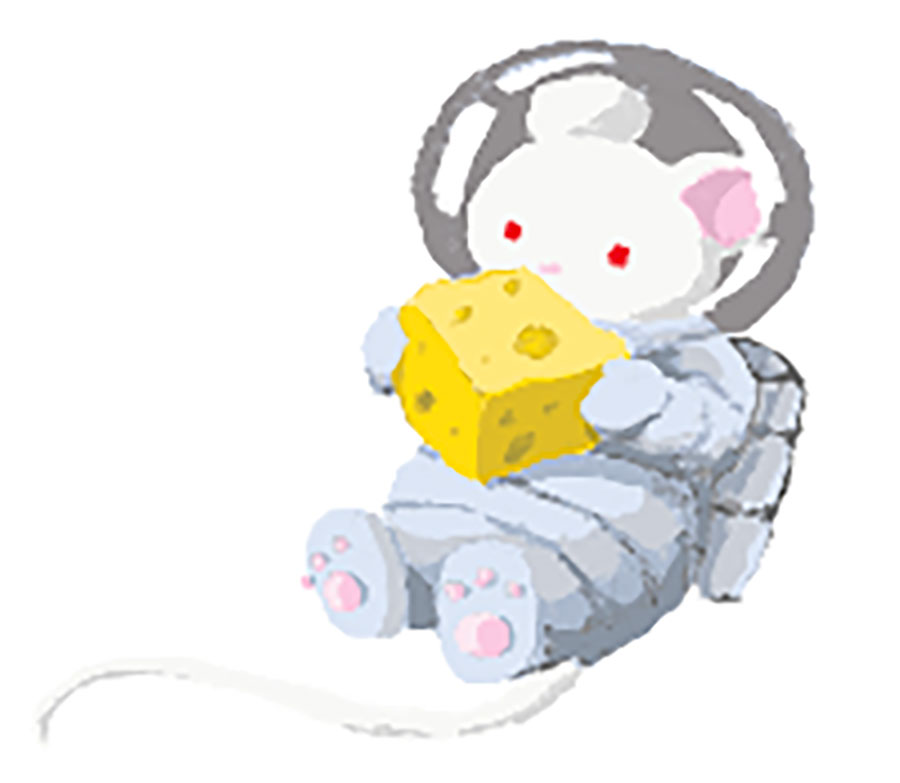 space-mouse-holding-cheese