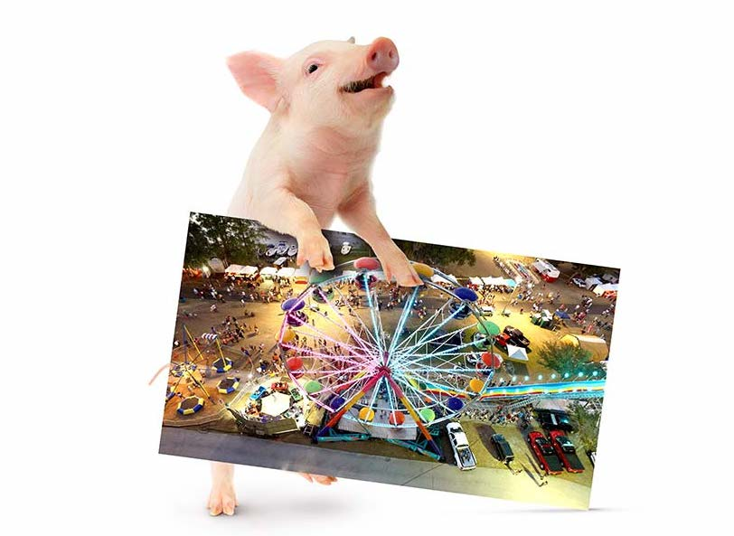 pig-holding-carnival-photo