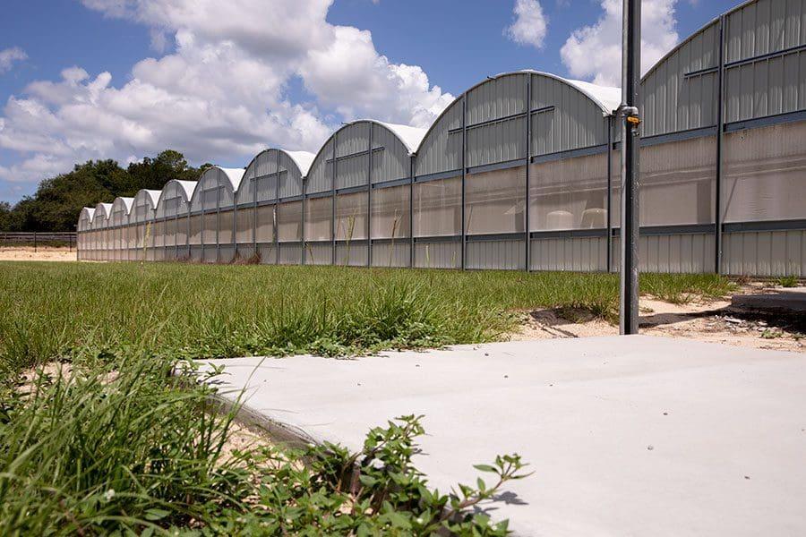Treadwell Farms Grow Farm